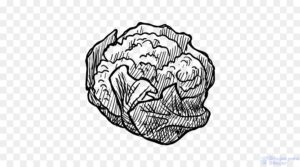 coliflor morada