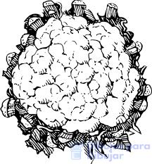 coliflor propiedades nutricionales