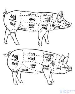 dibujos de carne asada