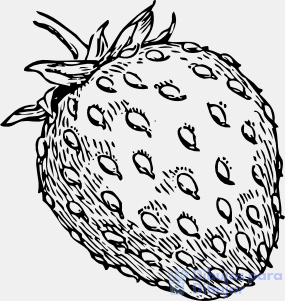 dibujos de fresas animadas