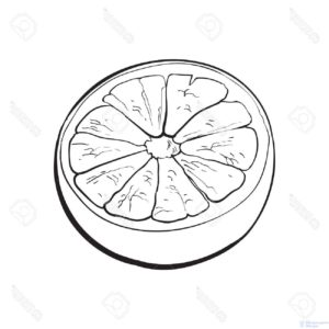dibujos de naranjas animadas