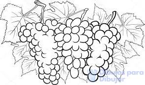 dibujos de uvas para colorear