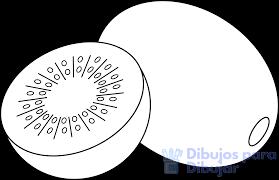 estructuras para kiwis