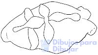 pan de muerto dibujo