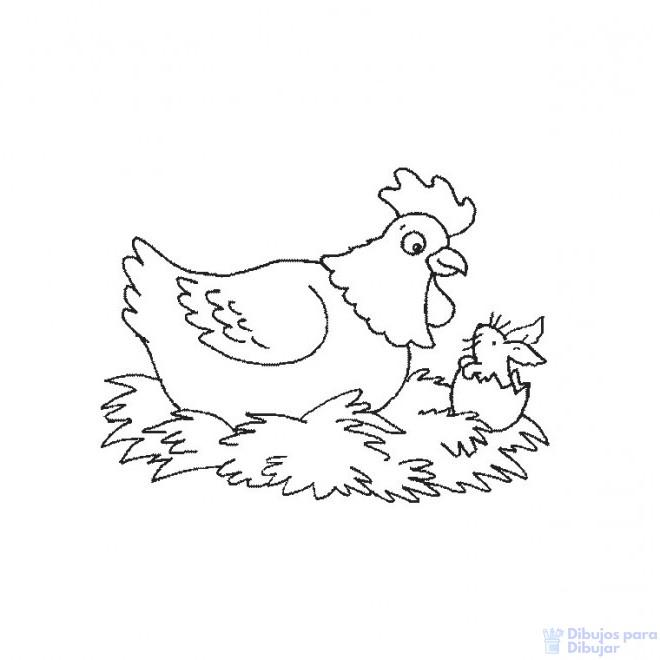 pollo dibujo para colorear