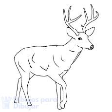 renos de navidad para dibujar