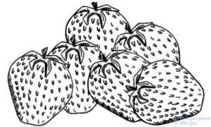 tarta de fresa dibujos animados