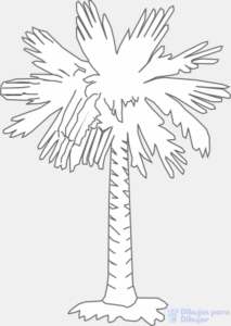 como dibujar una palmera a lapiz