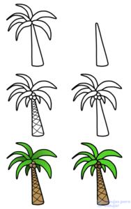 como dibujar una palmera paso a paso