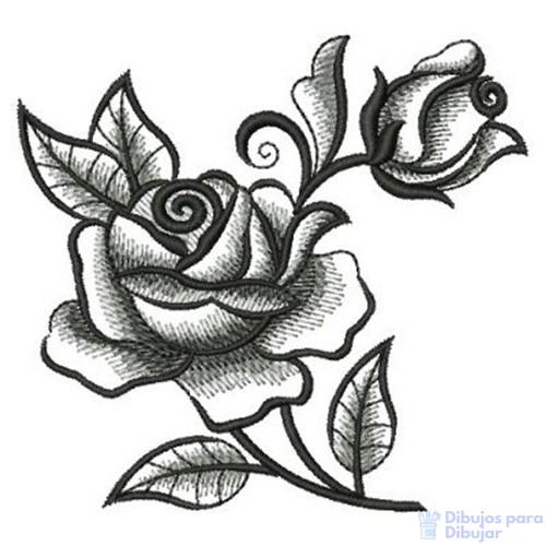 como dibujar una rosa abierta