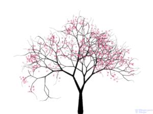 como pintar flores de cerezo