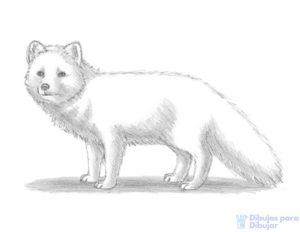 dibujos de animales para imprimir