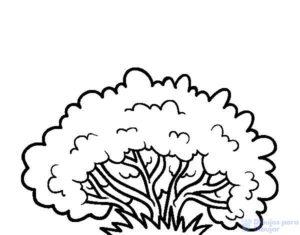 dibujos de arbustos para colorear