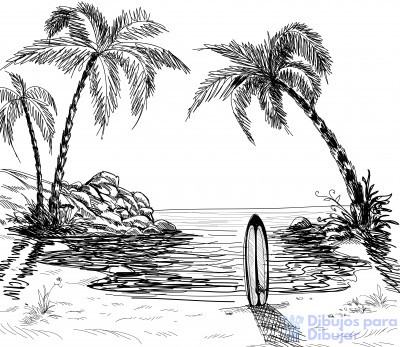 dibujos de palmeras tropicales
