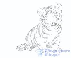 donde hay dibujos de animales para pintar