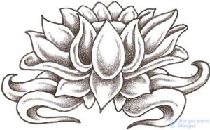 imagenes de flor de loto para tatuar