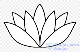 imagenes de loto