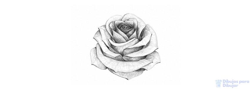 imagenes de ramos de rosas