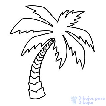 logotipos de palmeras