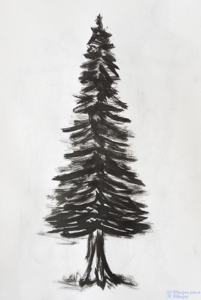pino para colorear