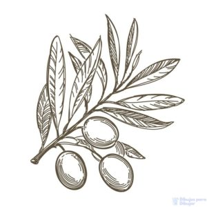 pinturas de olivos
