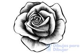 rosa dibujo facil