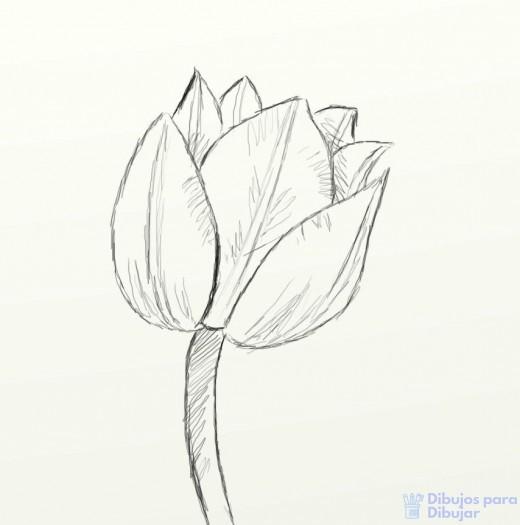 tulipanes para pintar al oleo